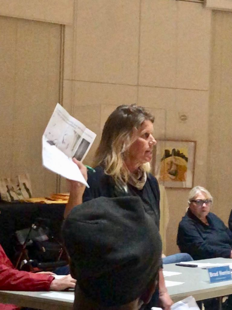 BikeSD's Nicole Burgess speaking in favor of the West Point Loma bike lanes