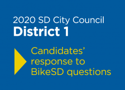 2020 SD City Council D1 candidate questionnaire